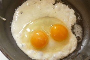 Kenapa Ada Telur Ayam Yang Punya Dua Kuning Telur Akubacaakutahu Semua Halaman Bobo