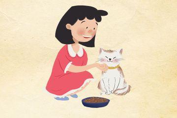 41++ Hewan peliharaan gambar kucing kartun terupdate