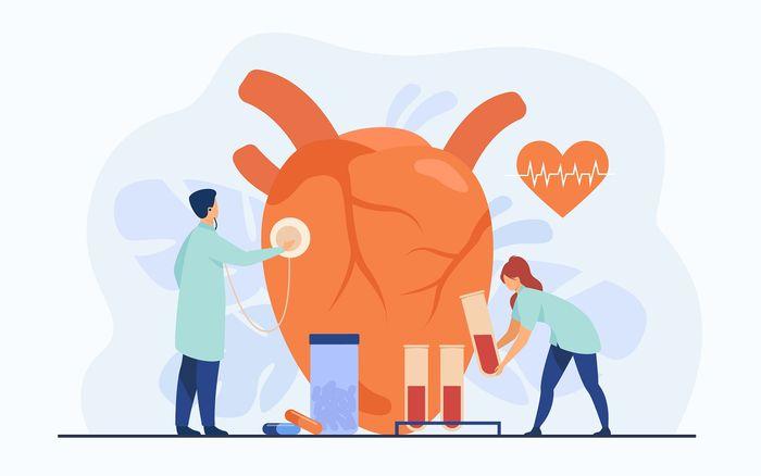 Heart illustration.  Angkak can also nourish the heart