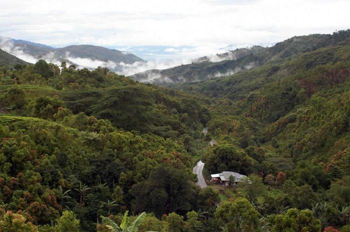 Taman Nasional Kerinci Seblat Semua Halaman Bobo