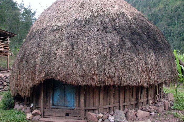 Honai Rumah Adat Suku Dani Papua Bobo