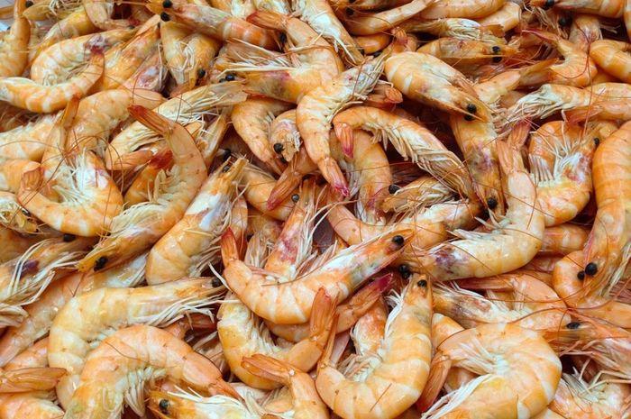 Makanan Laut Tak Cuma Ikan Bobo