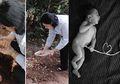 Tali Pusar Bayi Dipotong Lalu di Kubur, atau Dibiarkan Putus Alami