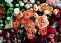Baca Kepribadian Moms Lewat Jenis Bunga yang Mewakili Bulan Kelahiran