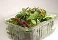 Salad Kemasan Ternyata Mengandung Bakteri Berbahaya. Ini Penjelasannya
