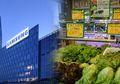 Berawal Dari Toko Sayuran, Inilah Sejarah Perusahaan Samsung yang Tak Pernah Kamu Ketahui