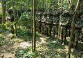 Meski Sedang Menjalani Pendidikan Komando Yang Tak Mengenal Kompromi, Begini Para Prajurit TNI Melalukan Kewajiban Salat Jumat dan Salat Lima Waktu
