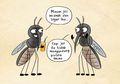 Serba-serbi Nyamuk, Hewan Kecil yang Sering Membuat Kita Bentol