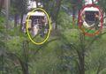 Viral Foto Mayat Terbungkus Kafan Dibuang, Rupanya Ini Kisah Sebenarnya dari Foto Tersebut