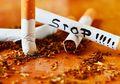 Catat Dads, Daftar Makanan Terbaik Untuk Cegah Kecanduan Merokok!