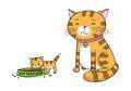 Punya Kucing Peliharaan? Simak Tips Merawat Kucing Ini, Yuk!