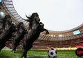 Waspada! Ini 7 Negara yang Bisa Jadi 'Kuda Hitam' di Piala Dunia 2018