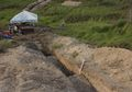 Penemuan Fosil Badak Tulis Ulang Sejarah Manusia Purba di Filipina
