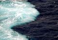Benarkah Dua Lautan Bertemu Namun Tidak Menyatu di Teluk Alaska?