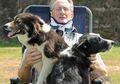 Heroik! Dua Anjing Gembala Itu Menyelamatkan Si Petani dari Kecelakaan Motor yang Sangat Mengerikan