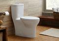 Mulai Sekarang, Tutup Toilet Terlebih Dulu Sebelum Menyiramnya, Demi Kesehatan Anda!