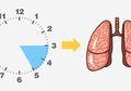 Sering Bangun di Tengah Malam? Hati-hati, Mungkin Ada Masalah pada Organ Tubuh Anda