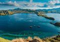 Padang Rumput Pulau Komodo Terbakar, Rokok Diduga Sebagai Penyebabnya