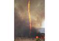 Firenado, Pusaran Api yang Terbentuk Karena Kebakaran dan Tornado