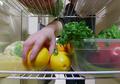 Pastikan #SahabatSayur dan #SahabatBuah Tidak Menyimpan Makanan Ini Dalam Kulkas, Manfaatnya Pasti Langsung Hilang