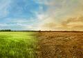 Perubahan Iklim Sebabkan Transformasi Besar Pada Ekosistem Bumi