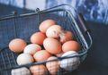 Cek yuk, Tips Memilih Telur yang Segar dan Berkualitas Baik!
