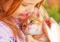 Ternyata Ini Alasan Kucing Suka Dielus Bagian Kepalanya