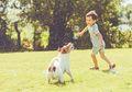 Mau Memelihara Anjing? Baca Dulu 4 Tips Memilih Anjing Peliharaan Ini