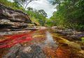 Wah, Sungai Ini Punya 5 Warna! Dari Mana Asal Warna-warni Itu?