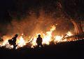 Pembakaran Lahan Terus Menerus Terjadi di Sumatra Selatan, Untuk Apa?