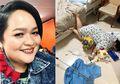 Meski Masih Diinfus, Sinyorita Esperanza 'Nekat' Lakukan Falling Stars Challenge!
