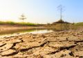 10 Daerah di Indonesia yang Mengalami Kekeringan Terpanjang