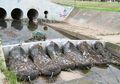 Simpel tapi Berfaedah, Ini Cara Australia Atasi Sampah Plastik di Air