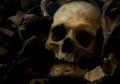 Temuan Kuburan Massal, 230 Kerangka Ditemukan Saat Penggalian Fondasi