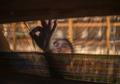 Warga Tuli-Bisu Desa Bengkala Berkreasi Lewat Kain Tenun dan Batik Lukis