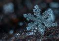 Beginilah Bentuk Salju Saat Dilihat Menggunakan Alat Pembesar