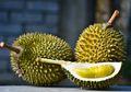 155 Warga Malaysia Tertipu Investasi Durian Musang King, Kerugiannya Capai Rp4,5 Miliar
