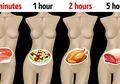 Ini Waktu yang Diperlukan Tubuh Mencerna Setiap Jenis Makanan, Jangan Remehkan Sebab Terlalu Cepat atau Terlalu Lambat Sama Bahayanya