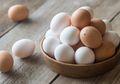 Mengapa Telur Berbentuk Oval? Aristoteles pun Sempat Dibuat Bingung