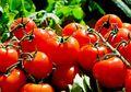 Dads, Ternyata Tomat Mempunyai Kandungan yang Dapat Membuat Subur!