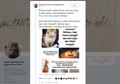 Viral, Kisah Sedih Bailey, Kucing yang 'Diculik'. Pemilik Diperas Smartphone Android, Faith In Humanity Lost.