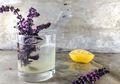Tak Hanya Bisa di Makan, 7 Tanaman Ini Juga Ampuh Menjadi Alternatif Obat yang Alami