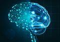 Memanfaatkan Kecerdasan Buatan untuk Menerjemahkan Pikiran Seseorang