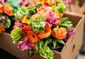 Sering Menjadi Simbol Cinta, Ternyata Setiap Bunga Punya Arti Sendiri!