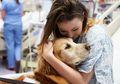 Pet Theraphy, Menggunakan Hewan Peliharan Untuk Mengobati Kanker