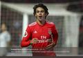 Joao Felix Mendadak Dapat Banyak Foto Syur Wanita Usai Cetak Hat-trick untuk Benfica