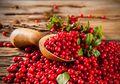 Melawan Infeksi Saluran Kemih dengan Ekstrak Cranberry, Apakah Bisa?