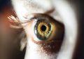 Empat Obat yang Dapat Merusak Mata Jika Digunakan Sembarangan