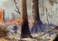 Mengkhawatirkan, Area Hutan Amazon yang Terbakar 28 Kali Luas Jakarta