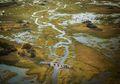 Delta Okavango Afrika Yang Kini Terancam